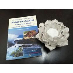 Algas de Galicia Alimento y...