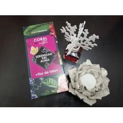 Mikado Coral 100ml - Aroma...