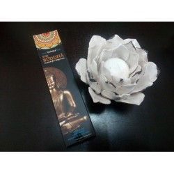 Incienso The Buddha 15gr -...