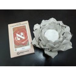 El Tarot de las Letras...
