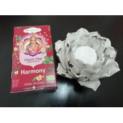 Infusión Harmony 7 Chakras...