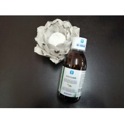 Ergylixir 250ml - Nutergia