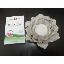 H-DYN 12 900mg 30comp -...
