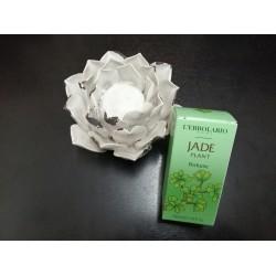 Perfume Jade 50ml -...