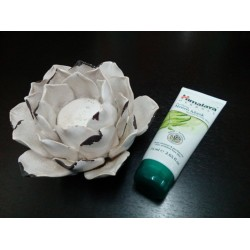 Mascarilla Facial Neem 75ml...