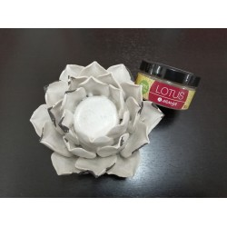 Lotus Polvo 50gr - Mimasa