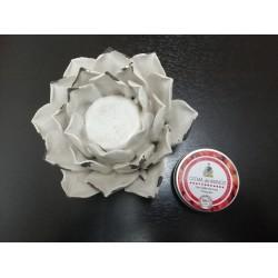 Crema de Manos BIO 50ml -...