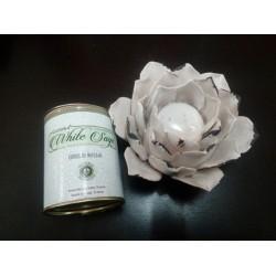 Conos de Reflujo Salvia...