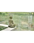 ♥ Meditación y Yoga